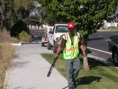 Landscaper Leafblower Opt