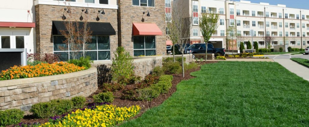 low cost commercial landscaping, San Jose CA